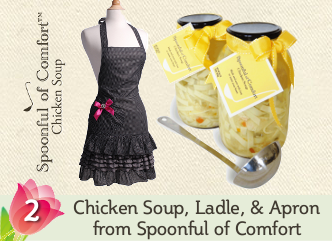 Spoonful of Comfort Giveaway